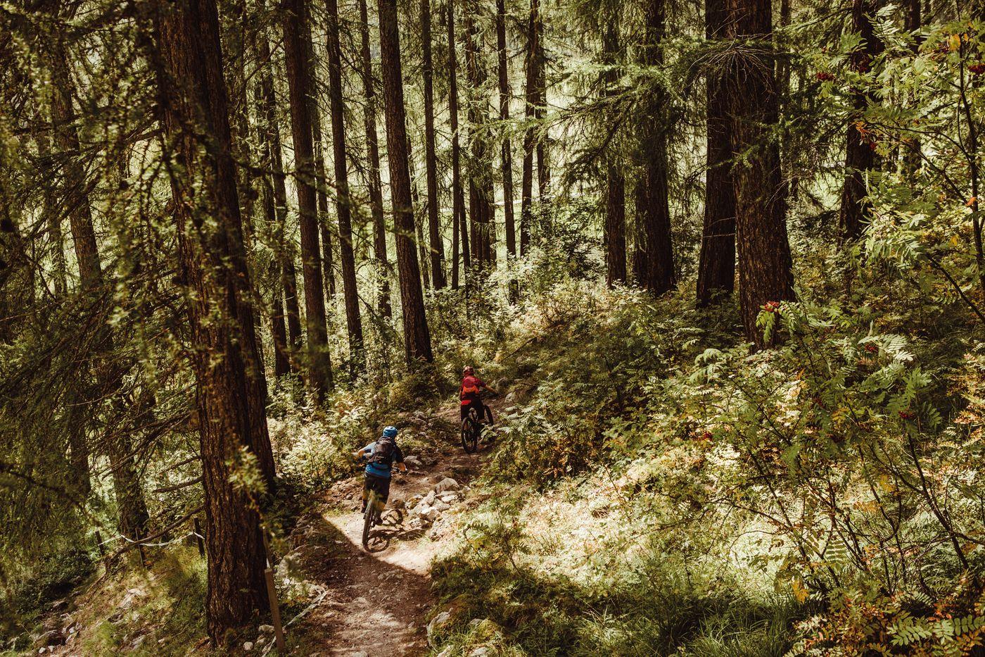 Crappa Prada God - Die Trails durch die bewaldeten Bergflanken des Val Müstair