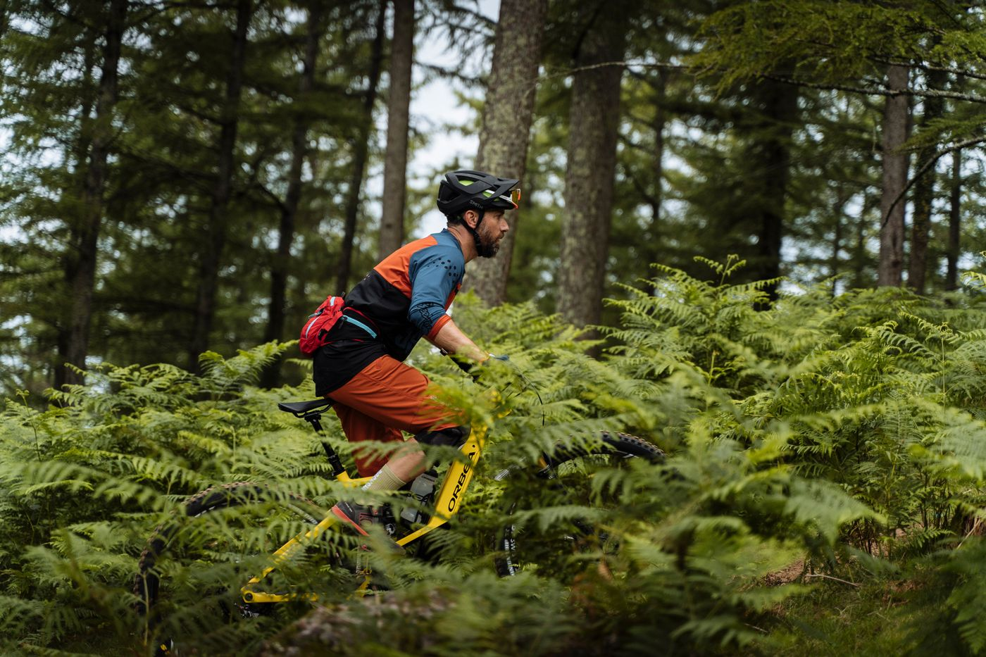 Orbea-Wild-FS-E-Mountainbike-Test