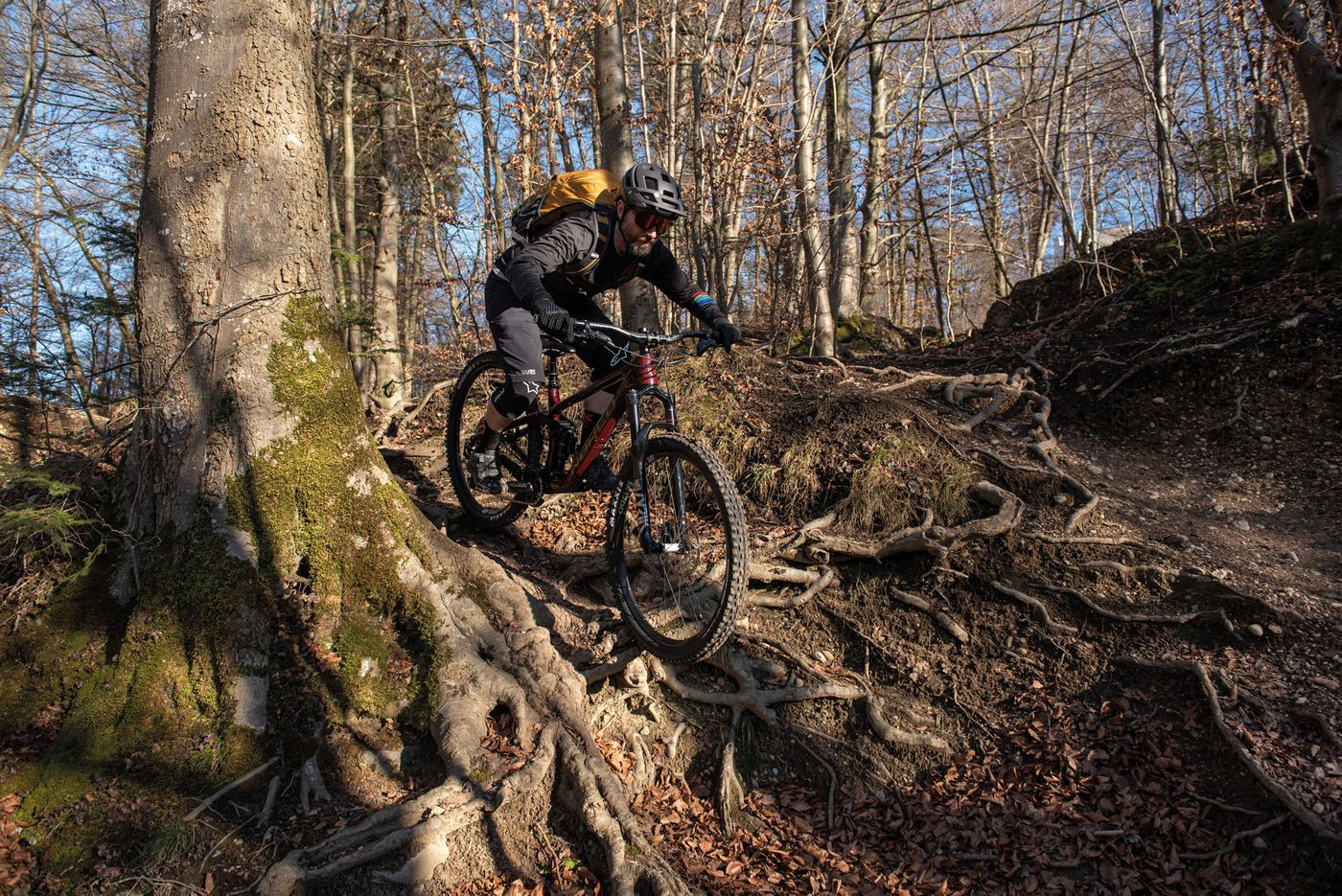 Norco Sight C1 20 - Action